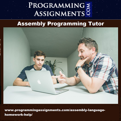 UK Assembly Programming Tutor